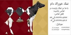 industry livestock-fish-poultry livestock-fish-poultry غذای دام و طیوردر شرکت نمک پاینده