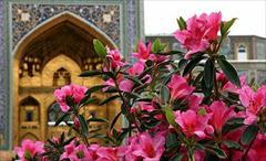 tour-travel domestic-tour mashhad تور مشهد ویژه عید سعید فطر