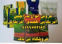 industry agriculture agriculture فروش تخم چمن امریکایی تی تاک