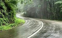 tour-travel domestic-tour nature-guides تور طبیعتگردی شاد و بکر جنگل گیسوم