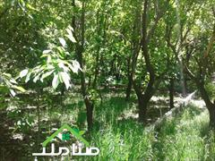 real-estate land-for-sale land-for-sale فروش باغ با بنای قدیمی در ملارد کد1181