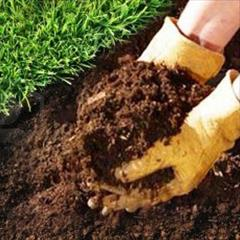 industry agriculture agriculture فروش کود ورمی کمپوست - 1 کیلو تا چند تن