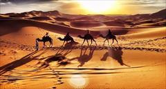 tour-travel domestic-tour desert تور 2/5 روزه کویر مصر