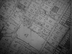 real-estate land-for-sale land-for-sale فایلینگ زمین در مشکین دشت و شهرک ناز