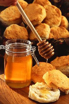 industry food food فروش بهترین  عسل طبیعی و دارویی