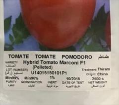 industry agriculture agriculture بذر گوجه فرنگی مارکنیf1