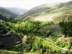 tour-travel domestic-tour mashhad تور استثنایی تبریز به مشهد