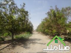 real-estate factory-stock-halls factory-stock-halls فروش باغ سوله در ماهدشت کرج کد1180