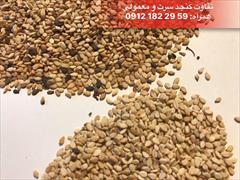 buy-sell food-drink nuts-dried-fruit فروش مستقیم کنجد(شرکت آذرین)
