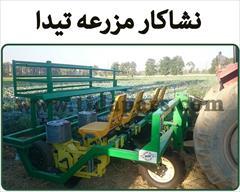 industry agriculture agriculture فروش نشاکار مزرعه با گارانتی تخصصی