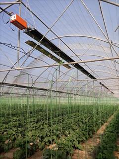industry agriculture agriculture گرمایش تابشی لوله ای گلخانه