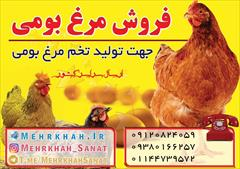industry agriculture agriculture مهر خواه صنعت
