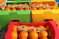 industry packaging-printing-advertising packaging-printing-advertising بسته بندی انواع محصولات کشاورزی با کارتن پلاست