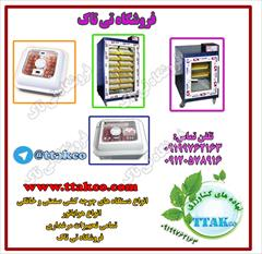 industry livestock-fish-poultry livestock-fish-poultry جوجه کشی در شیراز09199762163