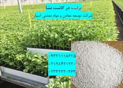 industry agriculture agriculture پرلیت کاشت نشا