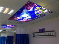 services home-services home-services نصب آسمان مجازی در قزوین