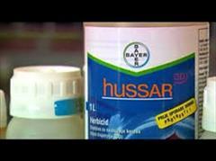 industry chemical chemical فروش سم hussar  بایر المان برای ذرت. قیمت سم hussa