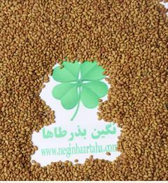 industry agriculture agriculture فروش انواع بذر وسموم کشاورزی
