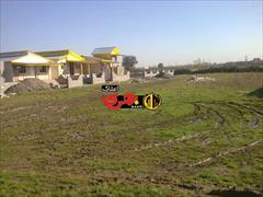 real-estate house-for-sale house-for-sale فروش فوری  ویلا 110متری طالب آباد