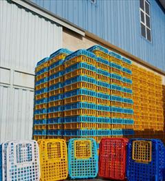 industry packaging-printing-advertising packaging-printing-advertising قفس حمل مرغ زنده