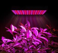 industry electronics-digital-devices electronics-digital-devices روش انواع ال ای دی رشد گیاه