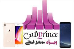services software-web-design software-web-design نرم افزار حسابداری پرنس  ویژه موبایل فروشی