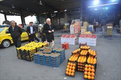 services business business خریدار عمده انواع میوه و محصولات کشاورزی