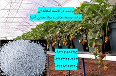 industry agriculture agriculture پرلیت در گلخانه