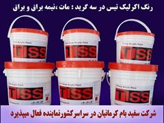 industry chemical chemical رنگ اکریلیک Tiss  Paint 780