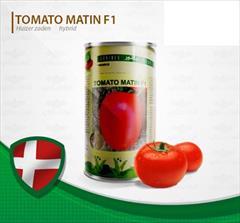 industry agriculture agriculture فروش بذر گوجه  متین.قیمت بذر گوجه متین
