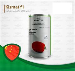 industry agriculture agriculture فروش بذر گوجه فرنگی کیشمات هیبرید