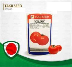 industry agriculture agriculture فروش بذر گوجه فرنگی تاکی با نام کاتانا