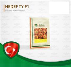 industry agriculture agriculture فروش بهترین بذر گوجه فرنگی گلخانه ای زودرس هدف ترک