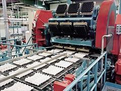 industry industrial-machinery industrial-machinery شانه تخم مرغ زن اتوماتیک