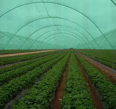 industry agriculture agriculture توری شید گلخانه - محافظ گلخانه - توری سایبان