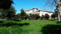 real-estate house-for-sale house-for-sale باغ ویلا در نوشهر سیسنگان