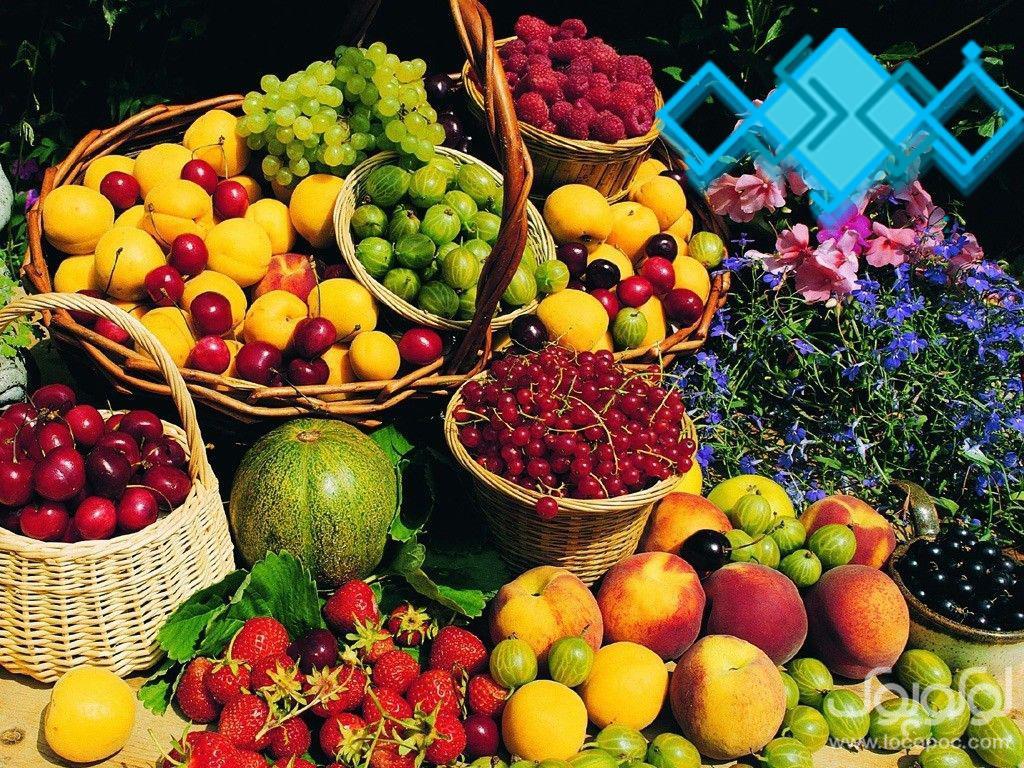 صادرات انواع میوه جات<br/>گروه بازرگانی فودوکو عرضه کننده مرغوبترین محصولات باغات کشور ایران به بازارهای صادراتی بین المللی می باشد <br/><br/>***جهت استفاده از مش services business business