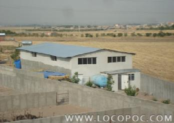 یک واحد مزرعه پرورش شترمرغ فعال ، واقع در اتوبان کرج – قزوین ، فاصله 3 کیلومتری محمدیه (زیباشهر) با یک هکتار زمین و 2000 متر پن دیوارکشی پرنده به تفکی real-estate house-for-sale house-for-sale