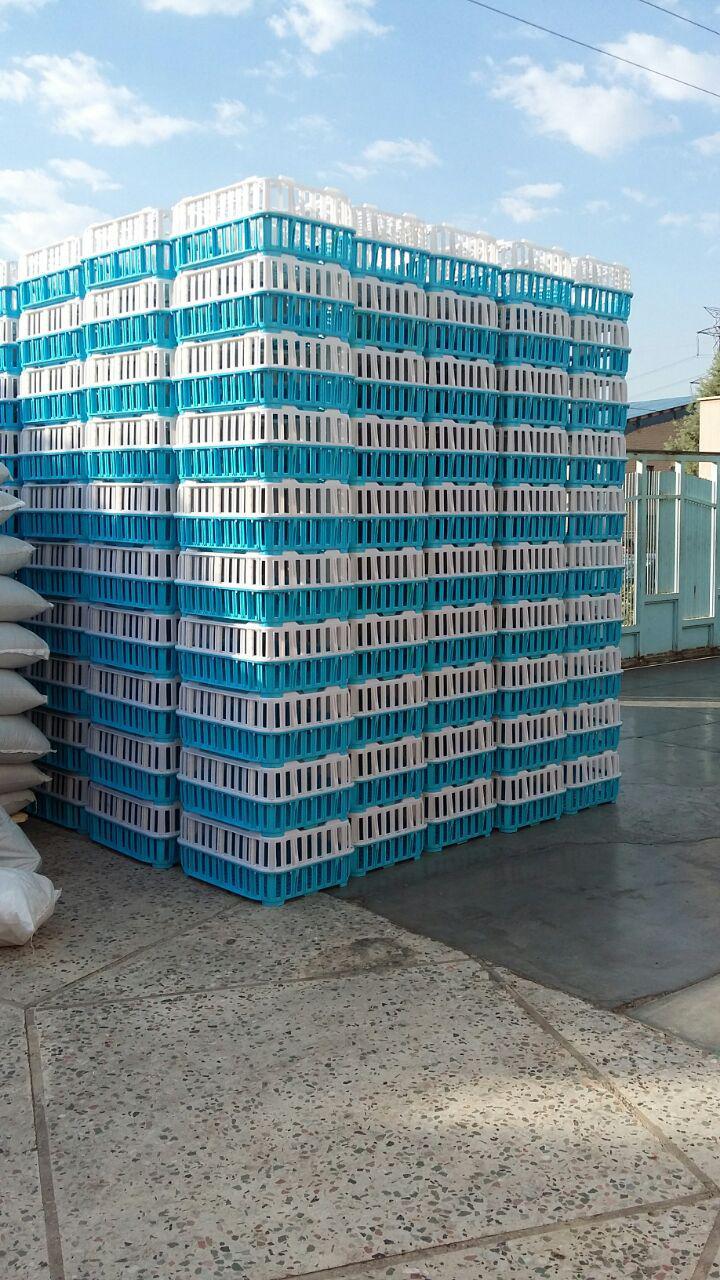 گروه صنعتی شایان اعتماد تولید کننده انواع سبد پلاستیکی ، جهت پرورش کرم ورمی کمپوست و کود ورمی کمپوست درایران. سبد مخصوص حمل سطل ماست ، شیر و لبنیات ، industry livestock-fish-poultry livestock-fish-poultry
