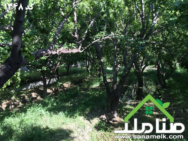 کد 1348<br/><br/>4300 متر باغ با درختان میوه قدیمی<br/><br/>سهمیه آب کشاورزی<br/><br/>دارای سند تکبرگ<br/><br/>قیمت کاسبی<br/><br/>متری 200هزار تومان<br/><br/>تمامی فایلهای کردامیر را اینجا مشاهده ک real-estate land-for-sale land-for-sale
