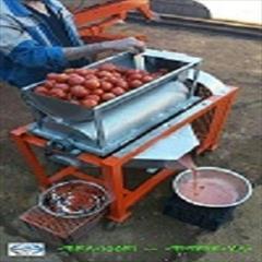 industry industrial-machinery industrial-machinery دستگاه آب گوجه گیری شایان کالا