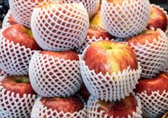 industry packaging-printing-advertising packaging-printing-advertising فوم بسته بندی میوه ، فوم میوه ، فوم توری بسته بندی