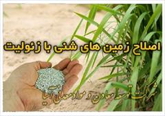 industry agriculture agriculture اصلاح زمین های شنی با زئولیت