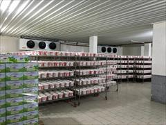 industry food food سردخانه ، تولید سردخانه ، فروش سردخانه