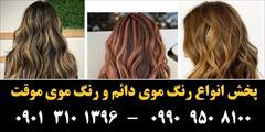 buy-sell personal health-beauty رنگ مو پادینا شماره C3-4-1 حجم 100 میلی لیتر