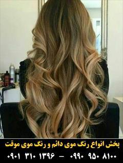 buy-sell personal health-beauty  رنگ مو آلما شماره 10.00 حجم 100 میلی لیتر