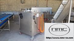 industry machinary machinary دستگاه کارواش  و شستشوی صنعتی  مدل KPT-WIC-18